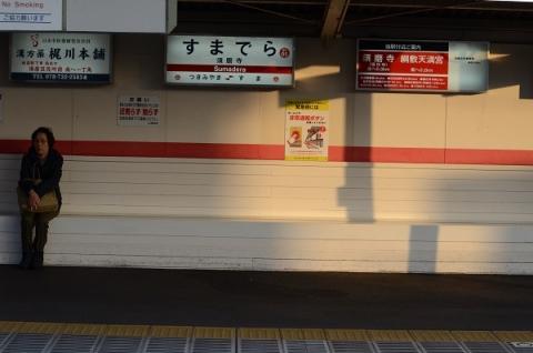 DSC_5567.jpg