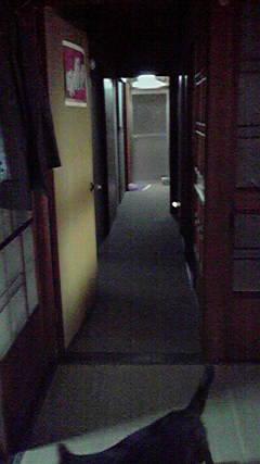 P1000453.jpg