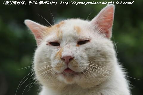 IMG_0118_e_blog.jpg
