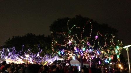 台北ランタン祭木