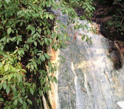 陽明山滝流れ