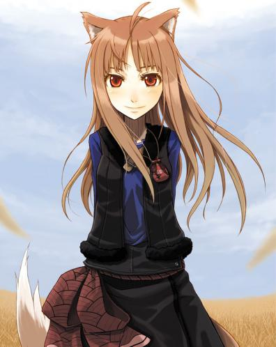 spice and wolf34
