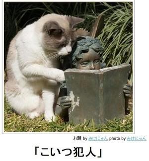 tc2_search_naver_jpCAD62VBZ.jpg