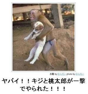 tc2_search_naver_jpCALA3V8E.jpg