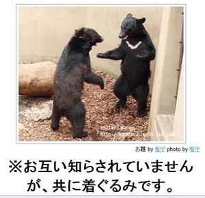 tc3_search_naver_jpCAZX6NXR.jpg