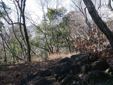 130120富士山(岩舟町) (9)s