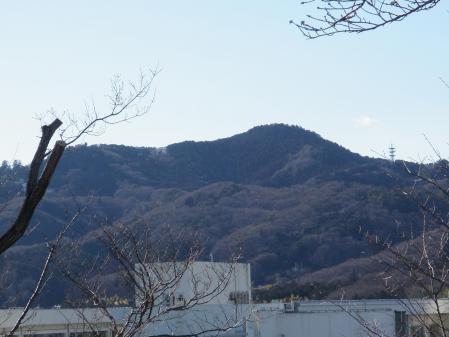 130120芝塚山(栃木市) (2)s