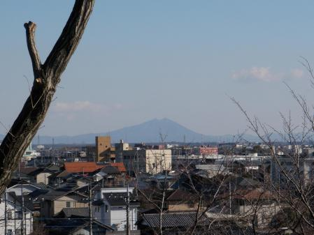 130120芝塚山(栃木市) (3)s