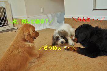 DSC_3713.jpg