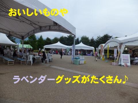 DSCF0259.jpg