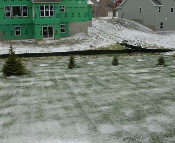 snow111014.jpg