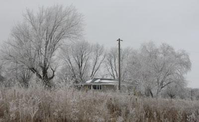 snow12101402.jpg