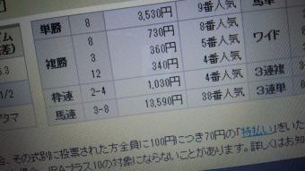 DCF00026_20130309211848.jpg
