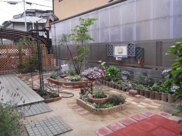 20120608今日の庭本日梅雨入り