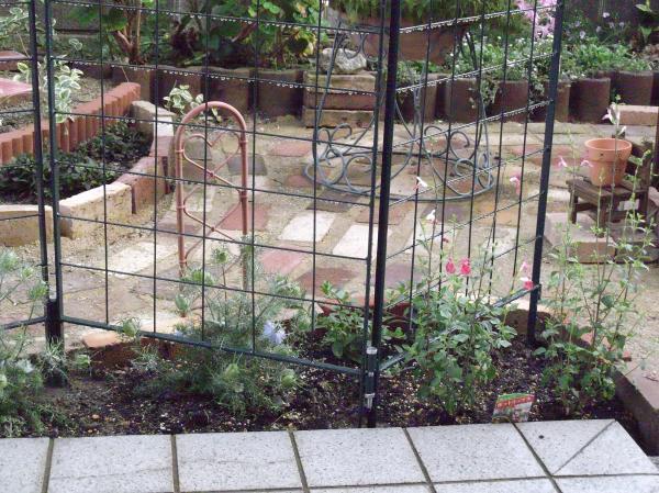 20120614ちび花壇
