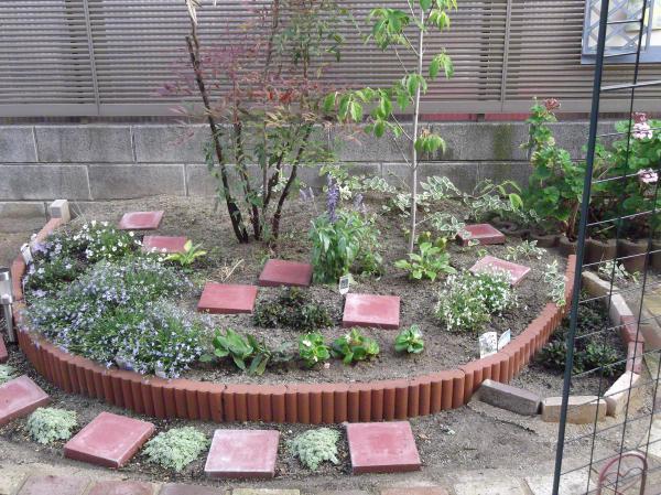 20120614ハナミズキ花壇