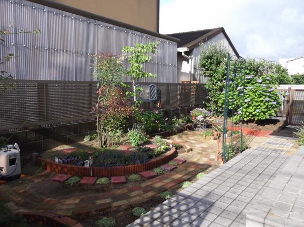 20120617今日の庭