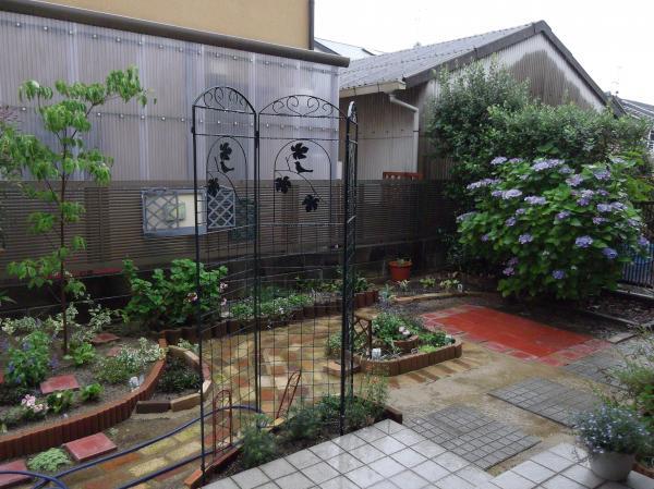 20120621今日の庭