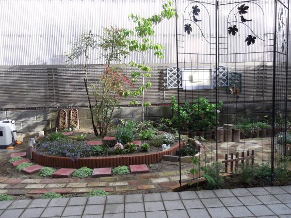 20120629ハナミズキ花壇