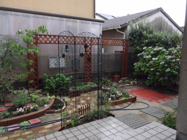 20120703今日の庭