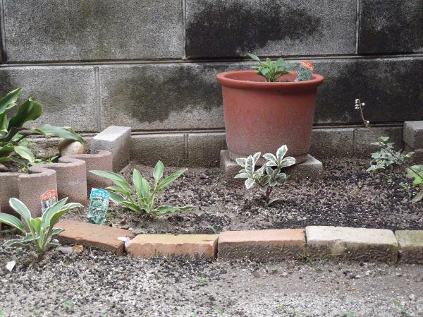 20120707シェード花壇①