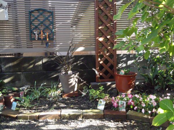 20120716シェード花壇