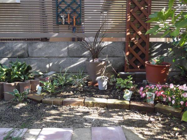 20120717シェード花壇
