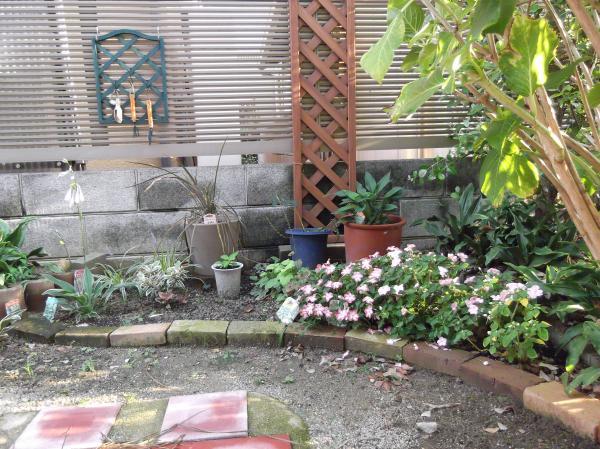 20120904シェード花壇