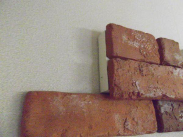 20121025壁④