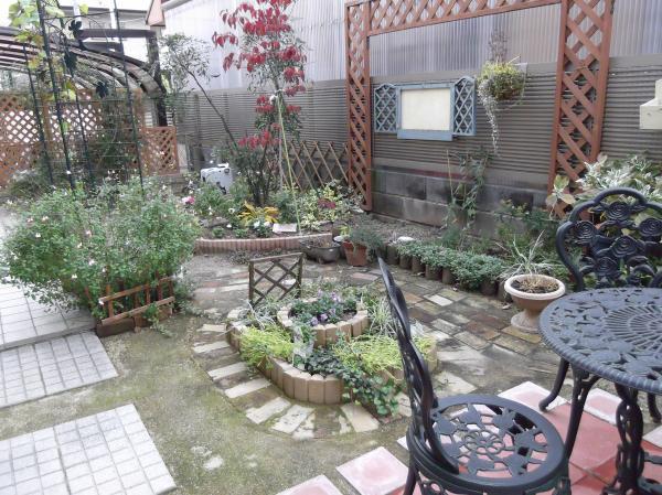 20121128真ん中花壇
