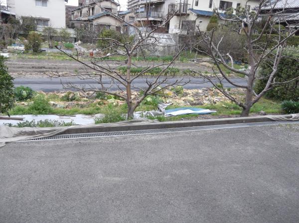 20130327畑
