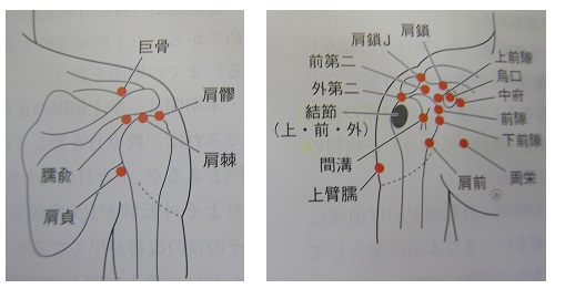 肩関節周辺の治療ポイント