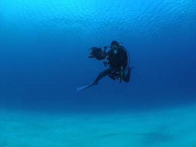 ケラマ諸島ファンダイビング