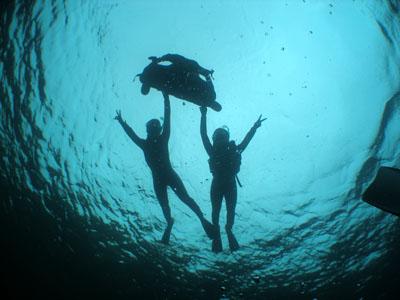 送迎付き青の洞窟シュノーケリング