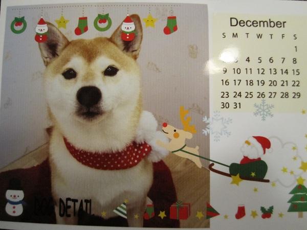 12月クリスマスver写真