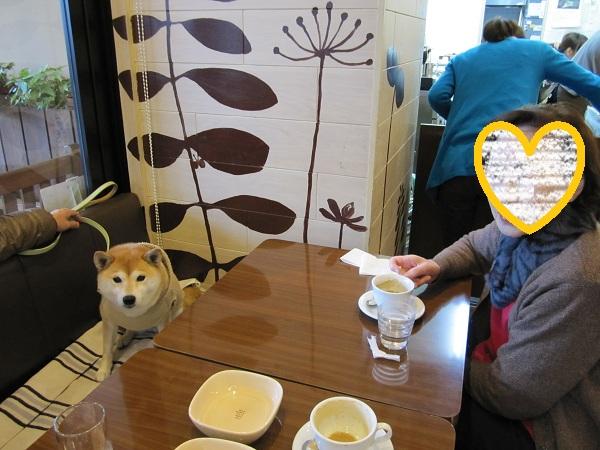 cafeでおばあちゃんと