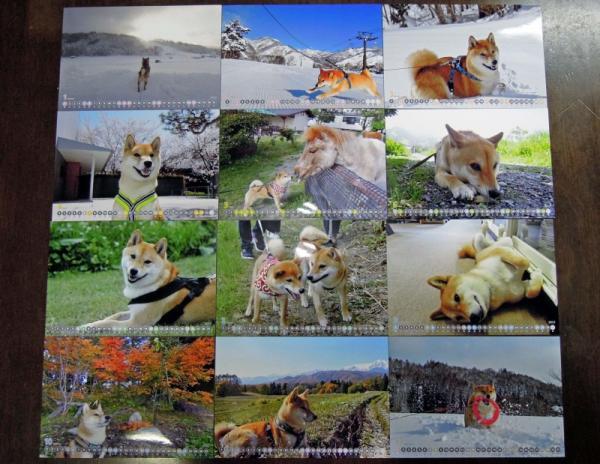 メル君2013カレンダー