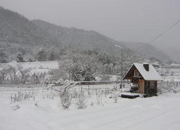 小屋250103雪