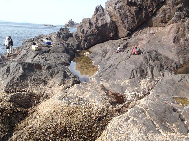 2012.5.29立目崎水たまり 027