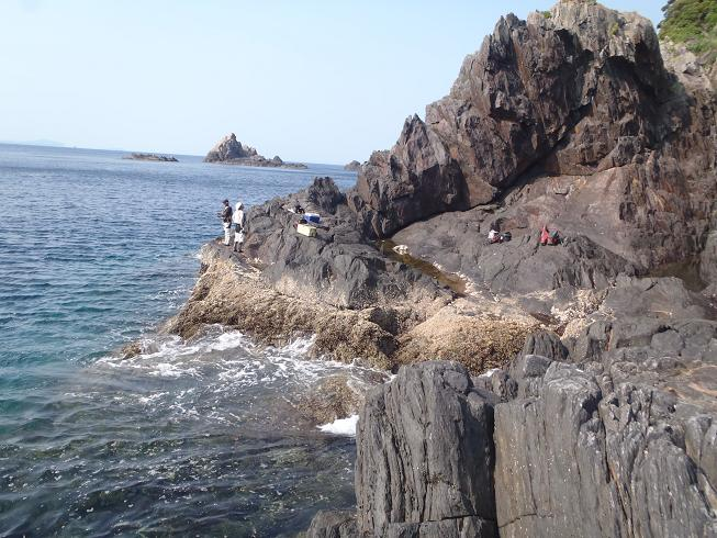 2012.5.29立目崎水たまり 026