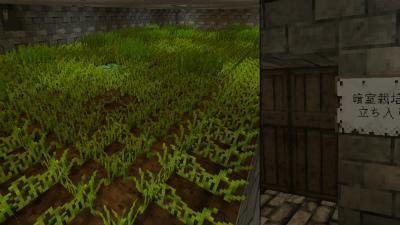 MCM20121016地下室の秘密の畑