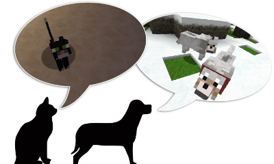 MCM20121116犬と猫
