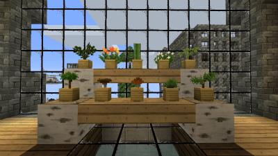 MCM20121120植物一覧