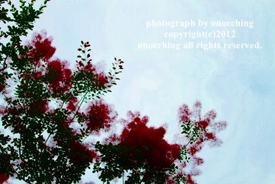2012_0624_145903-IMG_5269.jpg