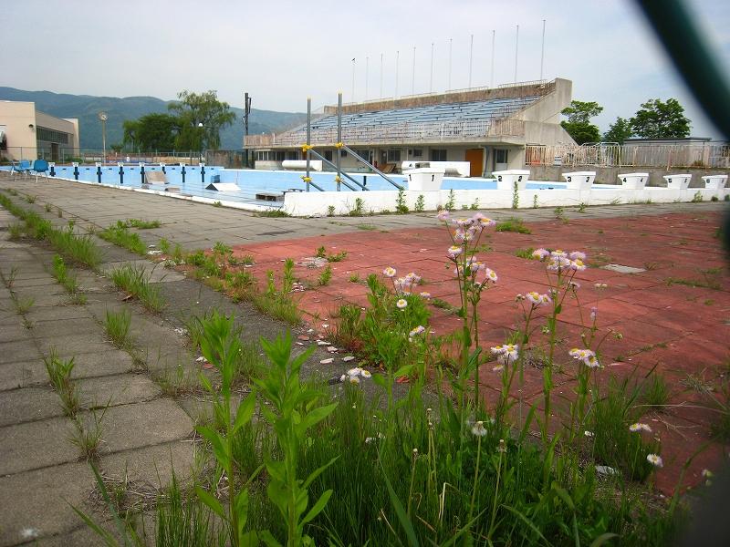 pool 911