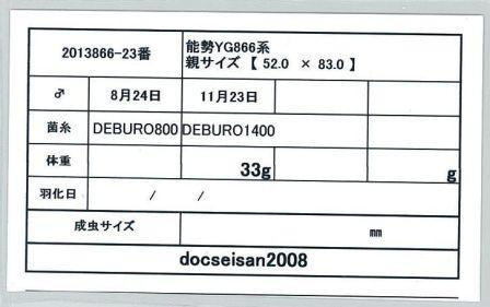 docseian2008-2013866-23card-up.jpg