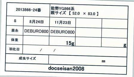 docseian2008-2013866-24card-up.jpg