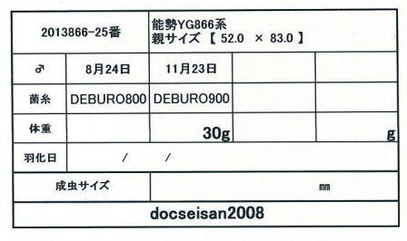 docseian2008-2013866-25card-up.jpg