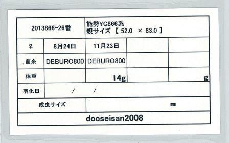 docseian2008-2013866-26card-up.jpg