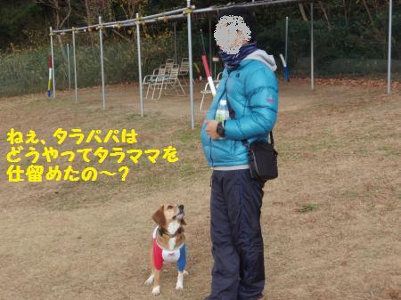 019_convert_20121228232452.jpg